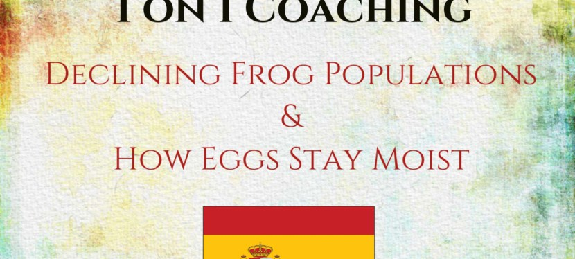TOEFL iBT | Speaking | 1 on 1 Coaching | Question 4: Declining Frog Populations & How Eggs Stay Moist