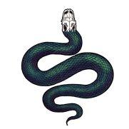 Mick Kaufer, Instructor, Skull Snake, Digital Painting