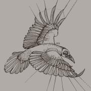 Mick Kaufer, Instructor, Flying Raven, Digital Drawing