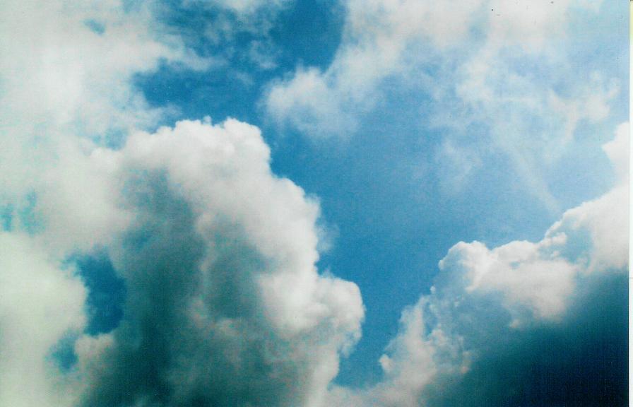 HEAVEN! ON EARTH! by Bethann Shannon A.K.A. The Art Angel
