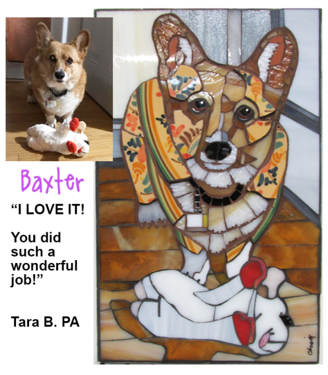 BAXTER WEBSITE
