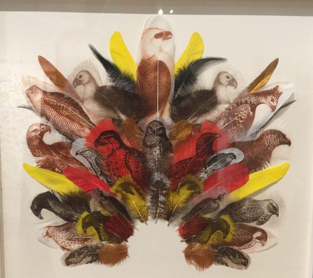 Falconer's Headdress, 2014, Rebecca Jewell