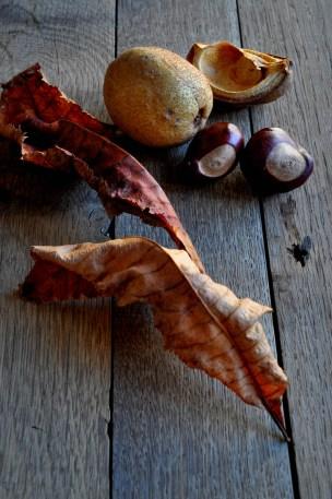 Leaves Conker Kernel 4_