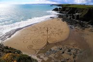 Ladies Tree Beach Art Copper Coast