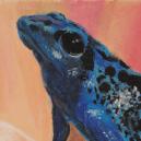 Oil Pastel 240 x 240