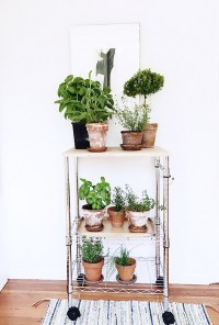 Beautiful And Most Creative DIY Plant Stand Ideas For ...