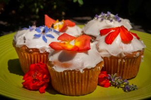 cosmos and dandelion cupcakes