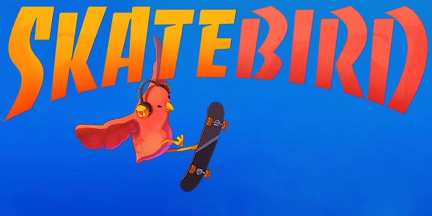 Análisis skatebird