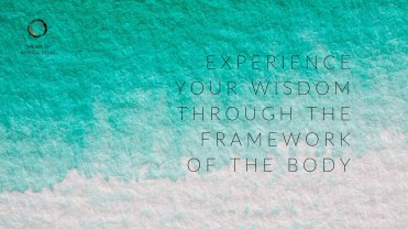 'Experience your wisdom'
