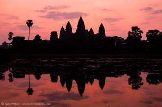 Ankor Wat at Sunrise