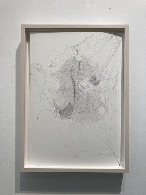 Tomás Saraceno作品於2020台北藝博「佇立·遠望—台灣藏家特展」