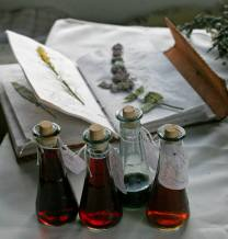 Herbalism - tinctures