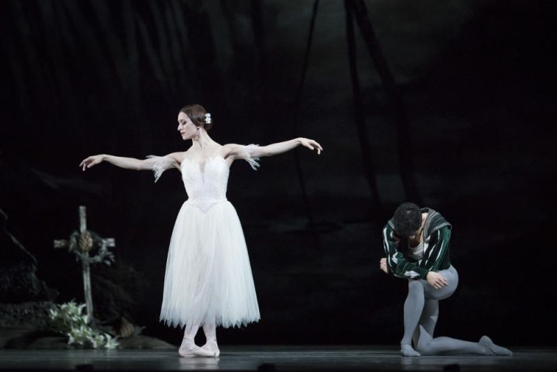 Giselle Royal Ballet review  beautiful dancing in a