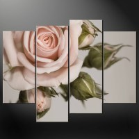The Best Rose Canvas Wall Art