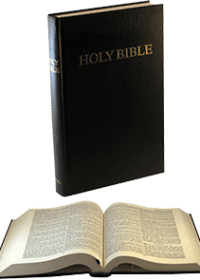 Comfort Text Bible (King James Version)