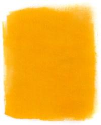 Mustard Fabric Paint - Arty Crafty