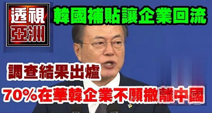 韓國補貼讓企業回流,調查結果出爐:70%在華韓企業不願撤離中國