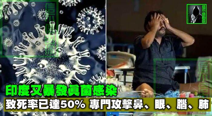 印度又暴發真菌感染,致死率已達50%,專門攻擊鼻、眼、腦、肺