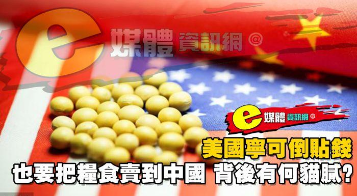美國寧可倒貼錢,也要把糧食賣到中國,背後有何貓膩?