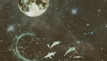 Moon in the 12th House – The Astrology Place