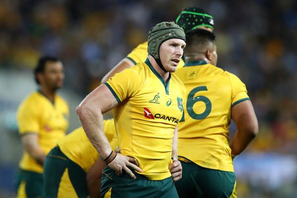 David+Pocock+Australia+vs+Argentina+Rugby+3lVJ8fwgkiGl