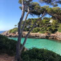 Which Balearic Island is Best?