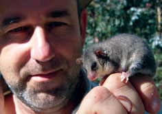 Eastern Pygmy Possum with Mark Jekabsons, photographed by Andrew Morrisson