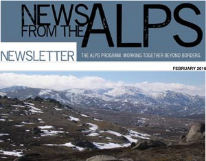 News from the Alps #53 image