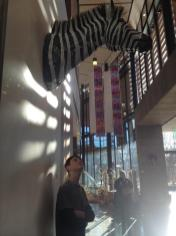 Pondering the zebra sticking out of the wall at Bainbridge Island Museum of Art, another amazing free museum