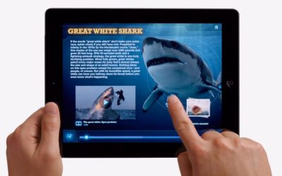 iPad Rules: Why You Need Them & What They Should Look Like