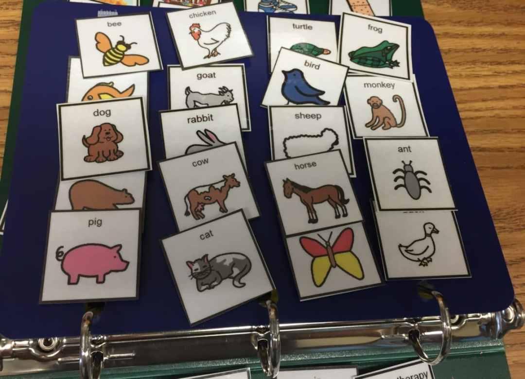 PECS Book Animals