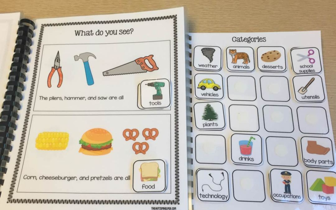 Using Adapted Books to Teach Categories
