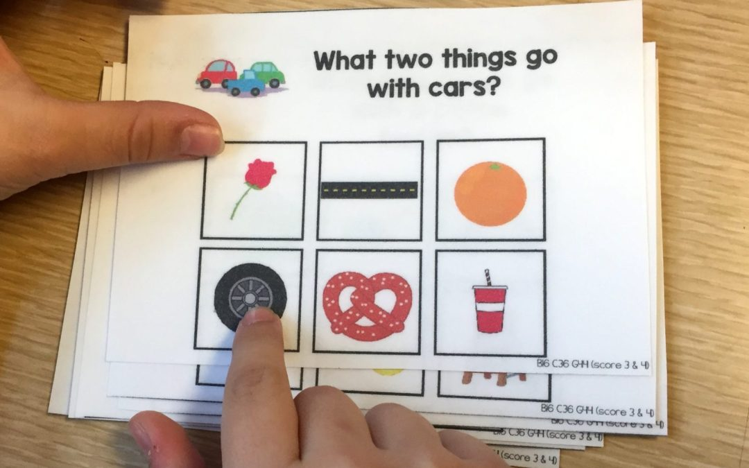 Associated Picture Task Cards