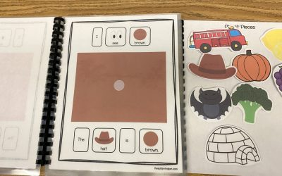 I See Colors Adapted Book and Color Themed Activities