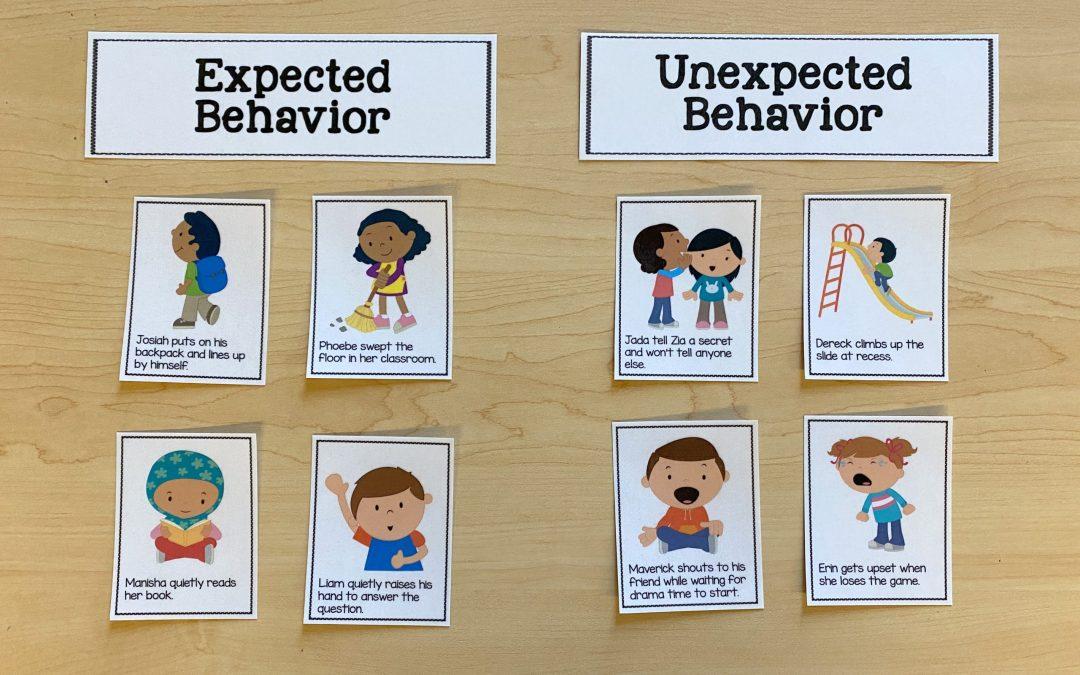 Behavior Task Cards