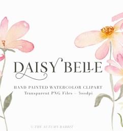 clipart daisy [ 2500 x 1664 Pixel ]