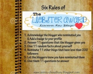 Rules-for-Liebster-Award-1024x819-e1423949036147