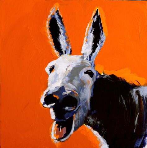 Donkey in Orange