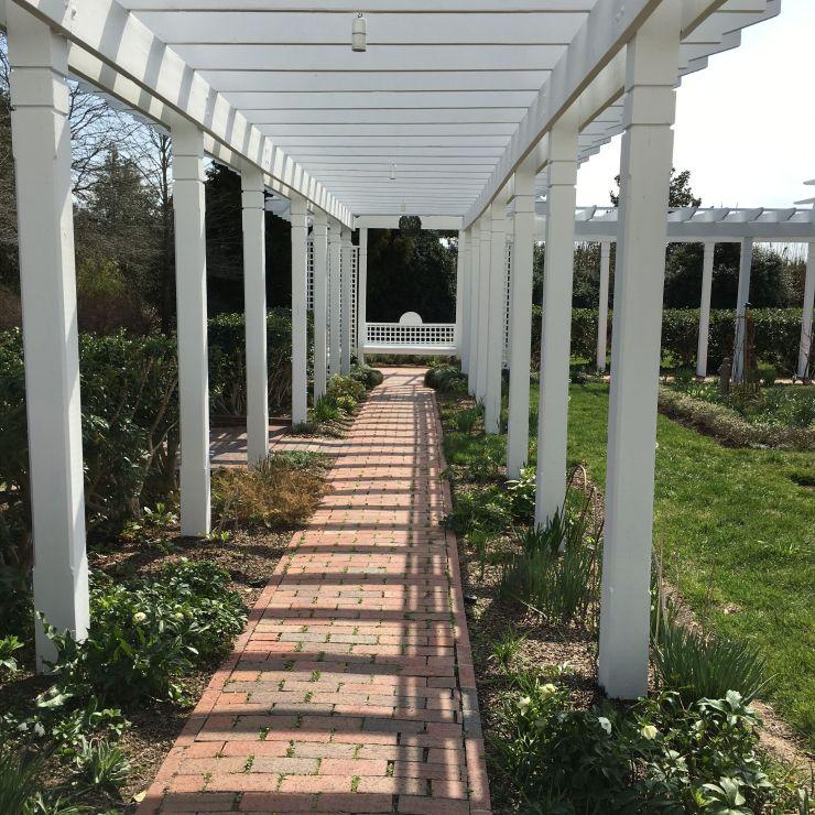 Walking around the gardens...