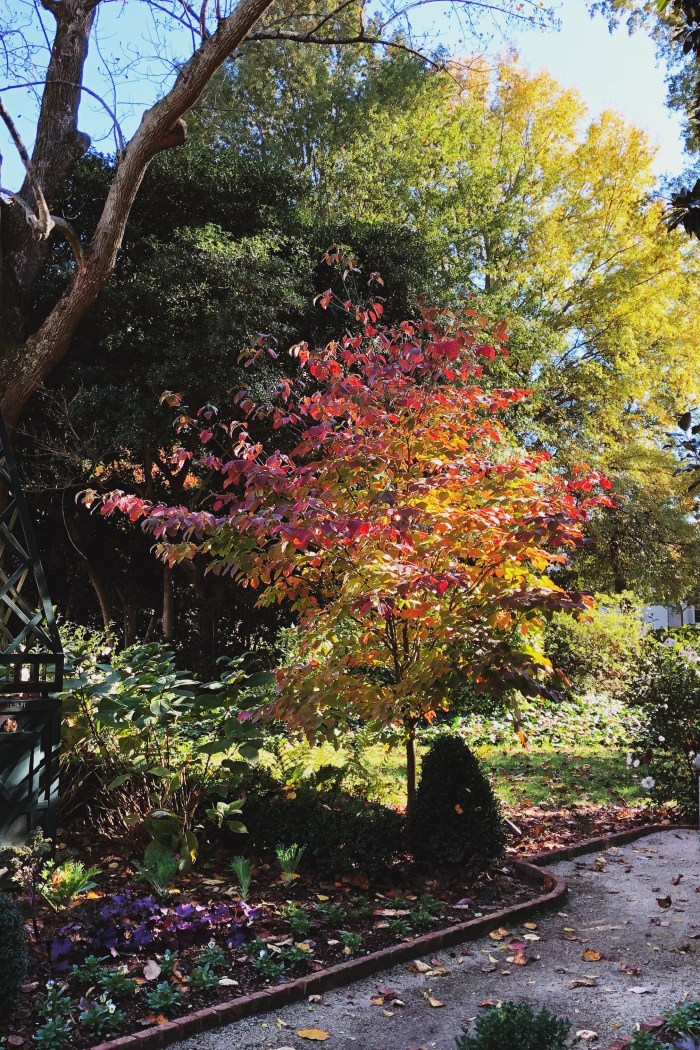 Autumn at the Duke Mansion Gardens // Chriselle Lim Collection Dress