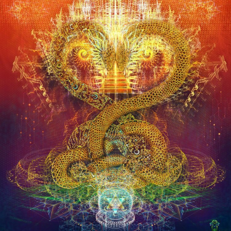 Kundalini Awakening Message Of The Snake Dream