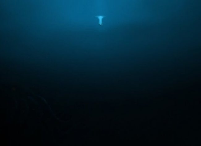do you fear the sea? 14