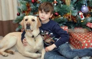dog helps autistic boy 2