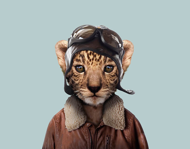 Cute Otter Wallpaper Super Cute Animals Dressed As Humans Portraits By Yago Partal