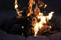 These Skull Fire Pit Logs Are The Perfect Accessory For ...