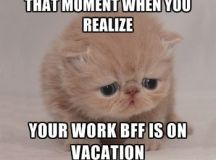 37 Work Memes You Shouldn't Be Reading Right Now Because ...