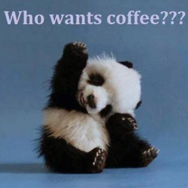 coffee meme 41