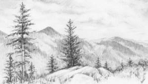 pencil nature drawings sketch sketches drawing artist shading richards want sketching paintingvalley shade advertisement