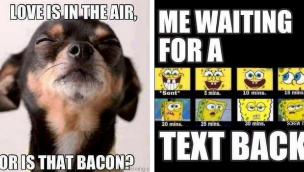 59 funny memes about