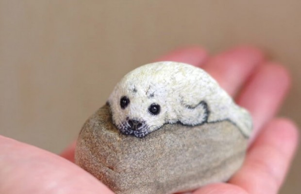 from stones to cute